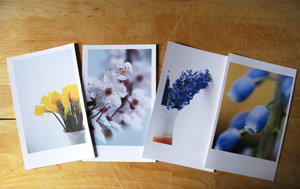 postcards_spring_blog